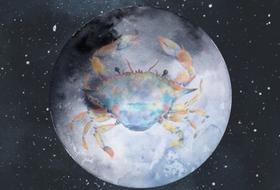 Polna Luna v Raku 12.01.2017 ob 12.33h